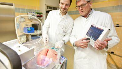 Dr. Norman Zinne (l.) und Professor Dr. Axel Haverich an einem Organ Care System (OCS), das eine Schweinelunge enthält. Professor Haverich hält die Steuereinheit für das OCS. Foto: Karin Kaiser/MHH