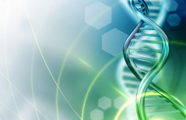 Symbolbild DNA
